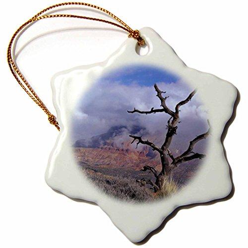 3dRose Danita Delimont - Trees - Pinyon pine snag tree, Mt Kinesava, Utah, USA - US45 SSM0426 - Scott T. Smith - 3 inch Snowflake Porcelain Ornament - Pinyon Christmas Tree
