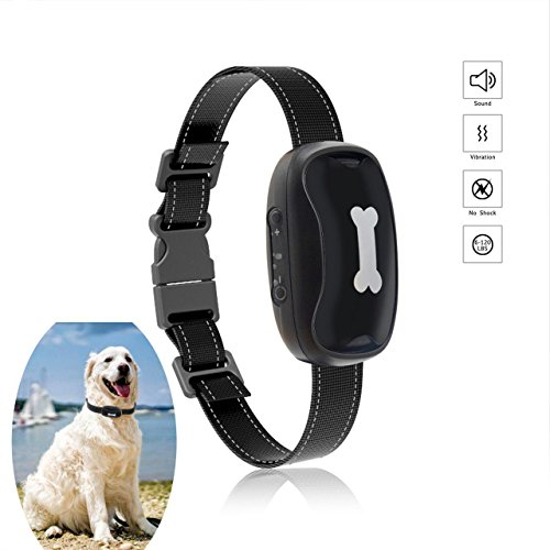Bow2Wow New Version Bark Collar Humanely Stops Barking with Sound and Vibration. NO SHOCK, Harmless and Humane. For All Dogs Bark Collar by Bow2Wow
