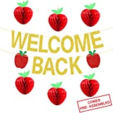 Welcome Back Banner Gold Glitter - Back to School Party Decorations Supplies - First Day of School Banner | Honeycomb Tissue Paper Apple Hanging Decorations - School Classroom Office Hanging Decor Sign