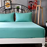Best Queen Waterproof Bed Sheet Protectors - BERTERI 1Pc 100% Polyester Solid Fitted Sheet Mattress Review