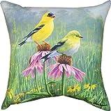 Manual Indoor/Outdoor Pillow, Yellow Finch Field X James Hautman, 18-Inch