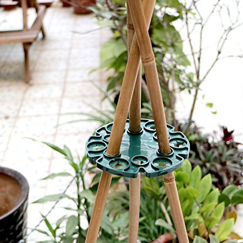 KINGLAKE 5 Pcs Bamboo Cane Holder Plastic Plant Cane Support Caps for Climbing Plants Sweet Peas Beans Green