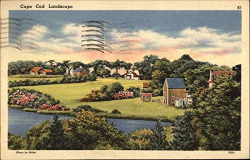 Cape Cod Landscape Cape Cod, Massachusetts Original Vintage Postcard
