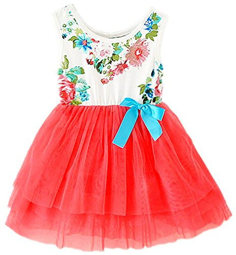 2Bunnies Baby Girls Toddler Sleeveless Floral Princess Dress Tulle Tutu Sundress (5, Candy Red)