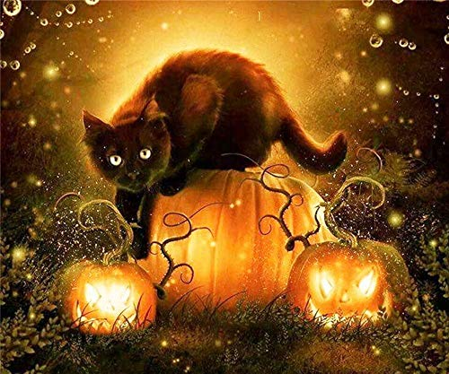 Diy Oil Painting, Painted By The Child's Digital Set -Halloween Black Cat And Pumpkin,16''X20'' -