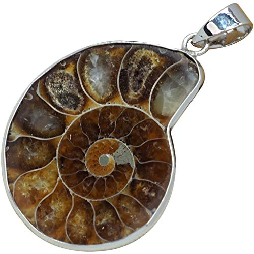 (Natural Ammonite Fossil Pendant Silver Jewelry for Women Wrapped Charm Handmade Conch Fossil Gift 55ct )