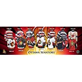 Frameworth Ottawa Senators Jersey Evolution Plaque, 5x15, Black