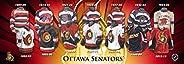 Frameworth Ottawa Senators 5x15 Jersey Evolution Plaque, Black, One Size