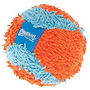 Chuckit Indoor Ball Dog Toy 1