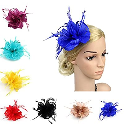 BAOBAO Womens Feather Mesh Net Fascinator Hair Clip Hat Wedding Cocktail Tea Party