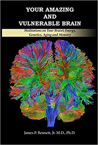 Your Brain Is Particularly Vulnerable >> Your Amazing And Vulnerable Brain Meditations On Your Brain S