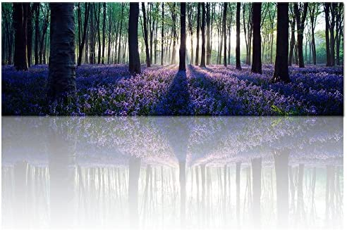 Visual Art Decor Framed Large Purple Canvas Wall Art Mild Sunshine Lavender Forest Landscape Tree Wall Art Picture Prints Gallery Wrap Home Living Room Decoration
