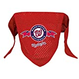 Hunter MFG Washington Nationals Mesh Dog Bandana, Small