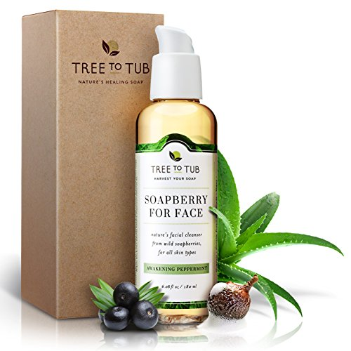 Real, Organic Oily Skin Face Wash, The Only pH 5.5 Balanced Peppermint Acne Cleanser For Sensitive Skin. Natural Facewash For Men And Women With Fresh Eco-Friendly Wild Soapberries