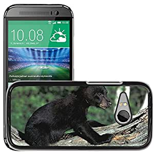 Super Stella Slim PC Hard Case Cover Skin Armor Shell Protection // M00145789 Bear Cub Black Wildlife Animal // HTC One Mini 2 / M8 MINI / (Not Fits M8)