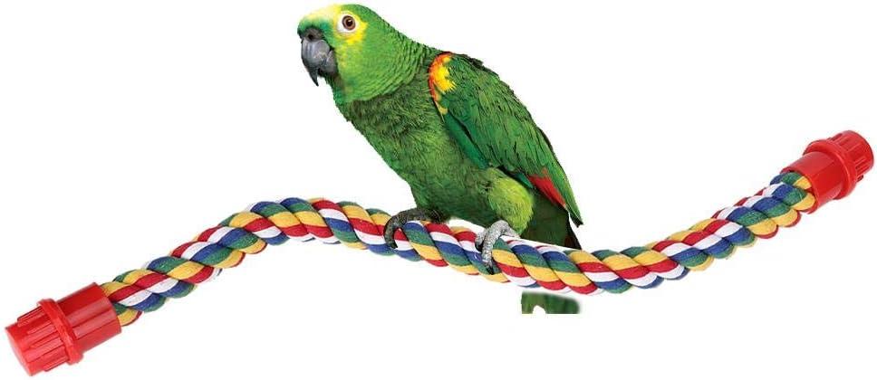 Percas de Cuerda de pájaros, Perca de Cuerda Espiral de Aves, Columpio de Loro de algodón Escalada de pie Juguetes de Jaula de Loro (S)