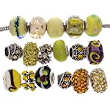 RUBYCA Murano Lampwork Charm Glass Beads Tibetan Crystal European Bracelet Mix Assortment Yellow 15Pcs