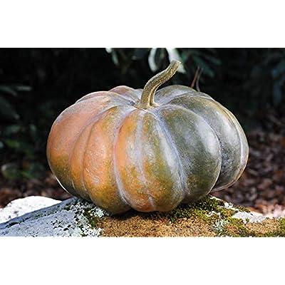 10 Seeds Fairytale musque de Province Pumpkin Heirloom Big Beautiful : Garden & Outdoor