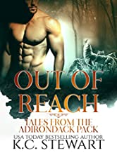 Out of Reach: Tales from the Adirondack Pack