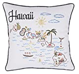 DecorHouzz Pillow Covers Hawaii State/City Map Pillowcase embroidered cushion cover Birthday Gift Anniversary Gift Graduation Gift New home Gift 18''x18'' (Hawaii)