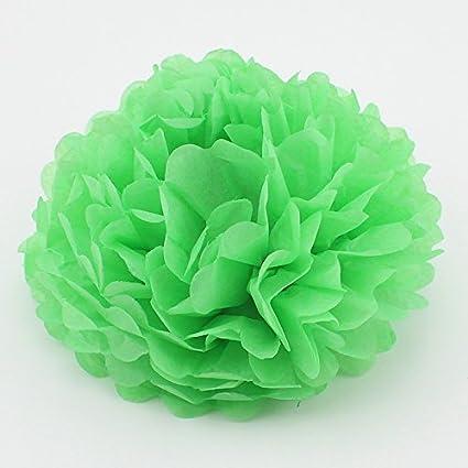 Amazon Since10 Pack 10 Inch Tissue Paper Flowerstissue Pom