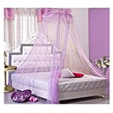 Romantic Lace Bed Canopy Women Girls Princess Mosquito Nets Indoor Mesh Curtain  (Purple)