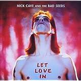 Let Love in [Vinyl LP]
