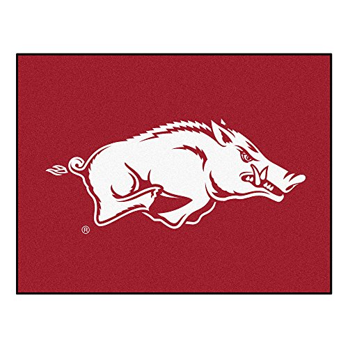 FANMATS NCAA University of Arkansas Razorbacks Nylon Face All-Star Rug