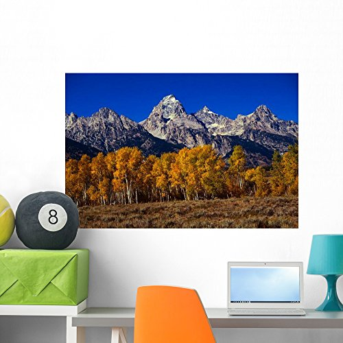 Forest near Grand Teton Wall Mural by Wallmonkeys Peel and Stick Graphic (36 in W x 24 in H) WM307045