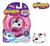 NEW! Zuru Hamsters In a House - PEPPER
