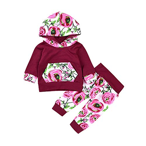 Charmkids Toddler Autumn Winter Baby Girls Clothes Long Sleeve Rose Red Hooded Sweater+Rose Lace Trousers Infant Outfits (Red, 12-18M)