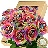 FiveSeasonStuff Fake Roses Wedding Flowers Real Touch Silk Rainbow Artificial Flowers 12 Stems