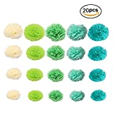 20 pcs Colored Tissue Hanging Paper Flower Paper Pom Poms For Birthday Wedding Party Baby Shower Room Nursery Decorations Craft Kit