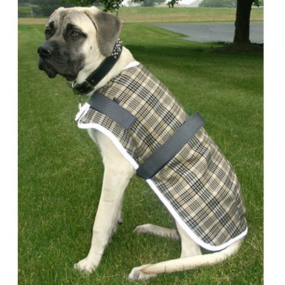 BLANKET DOG HIGH SPIRIT FLEECE LINED W/REFLECTIVE BIND 12″, My Pet Supplies