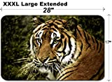 MSD Large Table Mat Non-Slip Natural Rubber Desk Pads IMAGE ID: 6067649 Sumatran tigers are protected in Indonesia Indonesia s forests