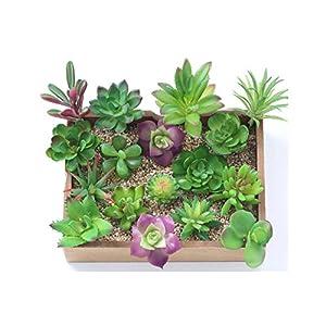 Mini Succulent Plants Palm Bonsai Local Landscape Artificial Fleshiness Cactus Flower for Table Decoration 78