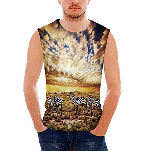 Safari100% Heavy Cotton H D Tank,Dreamy Photo of Savannahs at Sunset with Zebras