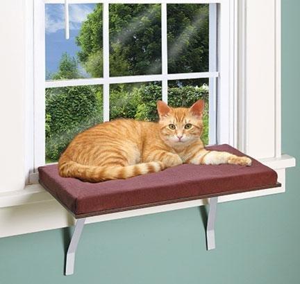 Deluxe Cat Window Perch - Pet Store Cat Window Perch
