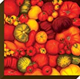 Oopsy daisy Tomatoes Stretched Canvas Wall Art by Judith Jarcho, 24 by 24-Inch
