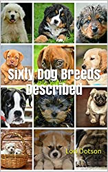 Sixty Dog Breeds Described