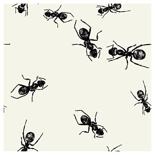 Creative Converting Elise 24 Count 3 Ply Picnic Ants Beverage Napkins, Black/White -