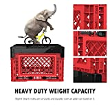BIGANT Heavy Duty Collapsible & Stackable Plastic