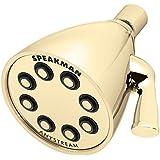 Speakman S-2251-PB Icon Anystream High Pressure Adjustable Shower Head, Polished Brass
