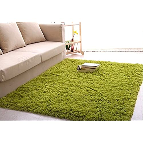 Green Shag Rugs: Amazon.com