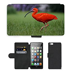 Super Stella Cell Phone Card Slot PU Leather Wallet Case // M00103725 Bird Park Walsrode Red Ibis Bird // Apple iPhone 5 5S 5G