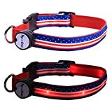 American Flag LED Light Up Dog Collar, Medium/10-15-Inch