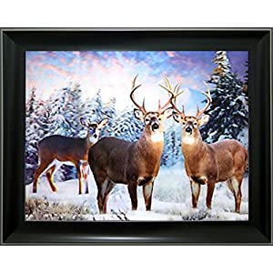 Lee's Collection Deer 3D Holographic Animated Picture with Black Frame-15 Inches x 19 Inches