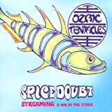 Spice Doubt by Ozric Tentacles (2003-03-18)