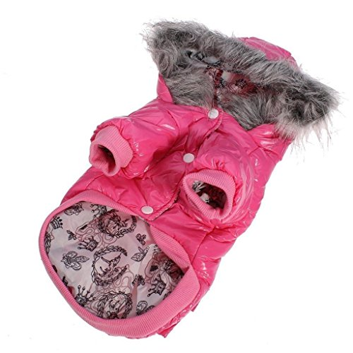 [FuzzyGreen Pink New Winter Warm Cute Hoodie Double Prockets Design Dog Pet Puppy Costume Clothes Apparel (Size] (Dorothy Dog Costume Xl)