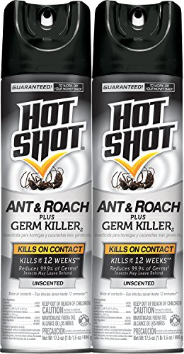 hot-shot-ant-roach-plus-germ-killer2-unscented-aerosol-hg-26300-2-175-oz